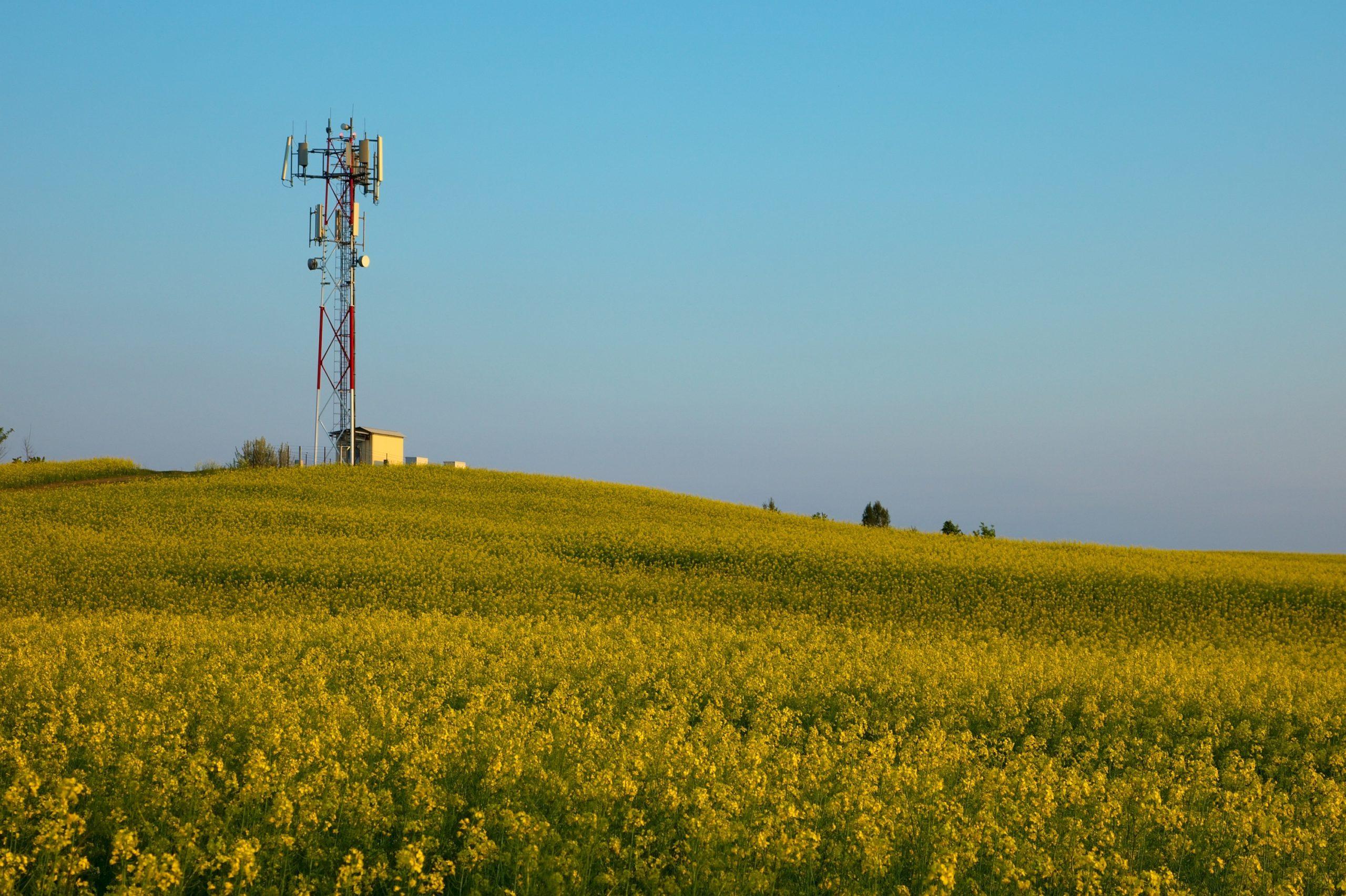 Transmitter in field